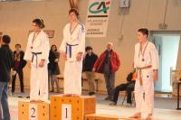Judo 2013 100