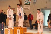 Judo 2013 101